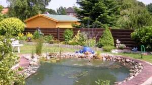 Teichanlage im Gaestehaus Schulz